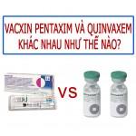 vacxin Pentaxim và Quinvaxem khác nhau như thế nào